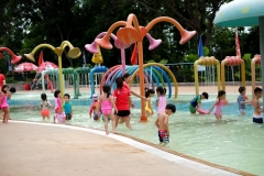 Zoo water Park with Group A (ECC)-5374