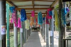 Songkran2018-051