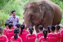 NIS-Summer-School-2019-Day-11-Maetaman-Elephant-Camp-13