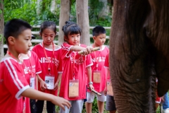 NIS-Summer-School-2019-Day-11-Maetaman-Elephant-Camp-19
