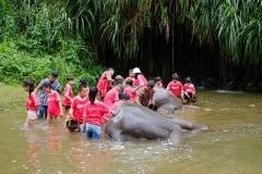 NIS-Summer-School-2019-Day-11-Maetaman-Elephant-Camp-24