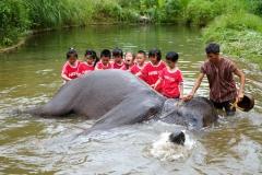 NIS-Summer-School-2019-Day-11-Maetaman-Elephant-Camp-31