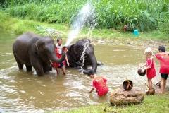 NIS-Summer-School-2019-Day-11-Maetaman-Elephant-Camp-36