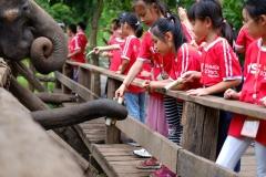 NIS-Summer-School-2019-Day-11-Maetaman-Elephant-Camp-38