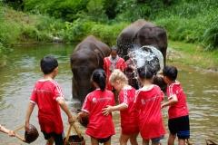 NIS-Summer-School-2019-Day-11-Maetaman-Elephant-Camp-42