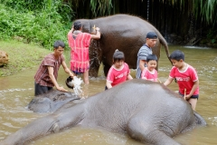 NIS-Summer-School-2019-Day-11-Maetaman-Elephant-Camp-52