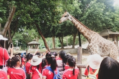 NIS-Summer-School-2019-Day-10-Chiang-Mai-Zoo-1