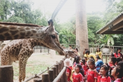 NIS-Summer-School-2019-Day-10-Chiang-Mai-Zoo-17