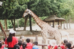 NIS-Summer-School-2019-Day-10-Chiang-Mai-Zoo-19