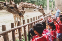 NIS-Summer-School-2019-Day-10-Chiang-Mai-Zoo-39