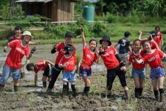 NIS-Summer-School-2019-Day-19-Ginger-Farm-12