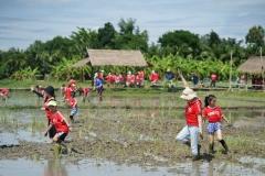 NIS-Summer-School-2019-Day-19-Ginger-Farm-38