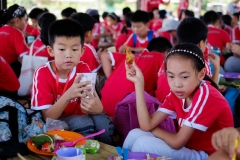 NIS-Summer-School-2019-Day-19-Ginger-Farm-39