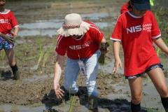 NIS-Summer-School-2019-Day-19-Ginger-Farm-47