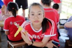 NIS-Summer-School-2019-Day-19-Ginger-Farm-49