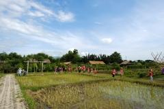 NIS-Summer-School-2019-Day-19-Ginger-Farm-54