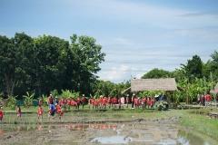 NIS-Summer-School-2019-Day-19-Ginger-Farm-55