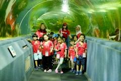 NIS-Summer-School-2019-Day-9-Aquarium-Chiang-Mai-Zoo-1