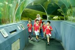 NIS-Summer-School-2019-Day-9-Aquarium-Chiang-Mai-Zoo-11