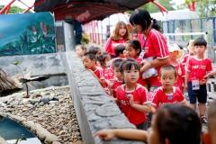 NIS-Summer-School-2019-Day-9-Aquarium-Chiang-Mai-Zoo-12