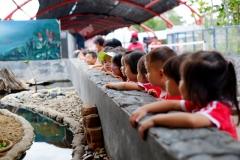 NIS-Summer-School-2019-Day-9-Aquarium-Chiang-Mai-Zoo-15