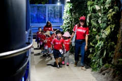 NIS-Summer-School-2019-Day-9-Aquarium-Chiang-Mai-Zoo-2