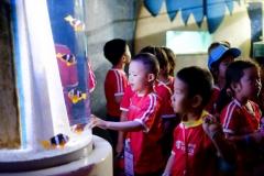 NIS-Summer-School-2019-Day-9-Aquarium-Chiang-Mai-Zoo-21