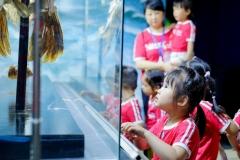 NIS-Summer-School-2019-Day-9-Aquarium-Chiang-Mai-Zoo-26