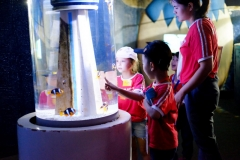 NIS-Summer-School-2019-Day-9-Aquarium-Chiang-Mai-Zoo-27