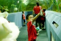 NIS-Summer-School-2019-Day-9-Aquarium-Chiang-Mai-Zoo-4