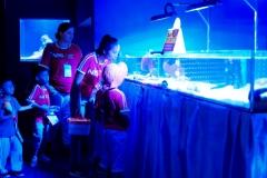 NIS-Summer-School-2019-Day-9-Aquarium-Chiang-Mai-Zoo-68