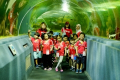 NIS-Summer-School-2019-Day-9-Aquarium-Chiang-Mai-Zoo-70