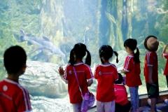 NIS-Summer-School-2019-Day-9-Aquarium-Chiang-Mai-Zoo-71